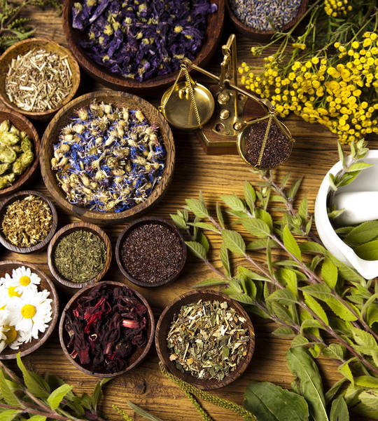 Cours Naturopathie A Distance