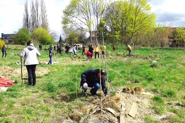 Apprendre Permaculture Island Uk | Renseignements